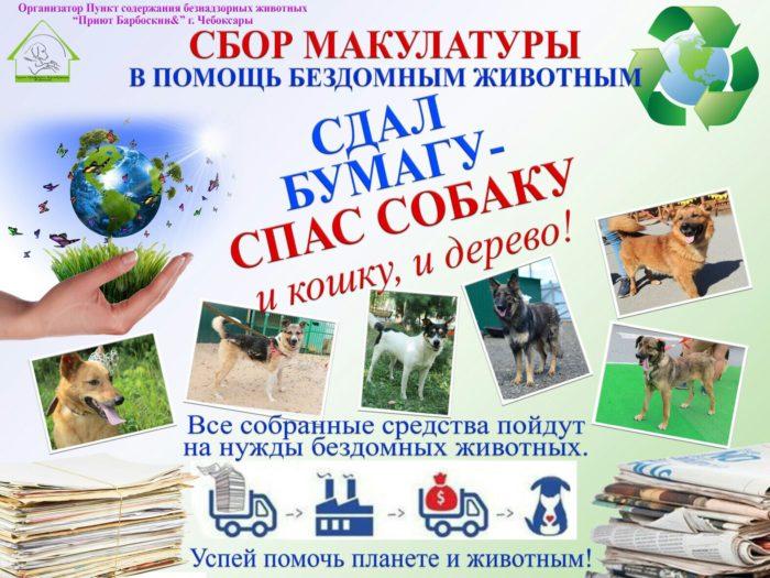 Сбор макулатуры в помощь животным